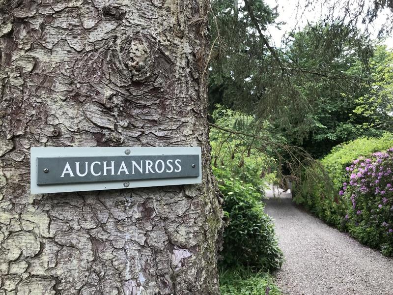 Auchanross House driveway
